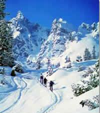 Alpenregio Wintersport