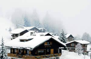 Chalets Appartementen Wintersport