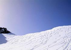 Skigebieden HochZillertal en Hochfügen