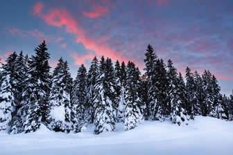 Onze tips voor een wintersportvakantie in het Fleimstal