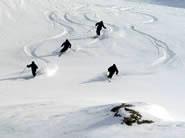 Wendbaar met Carve Skiën